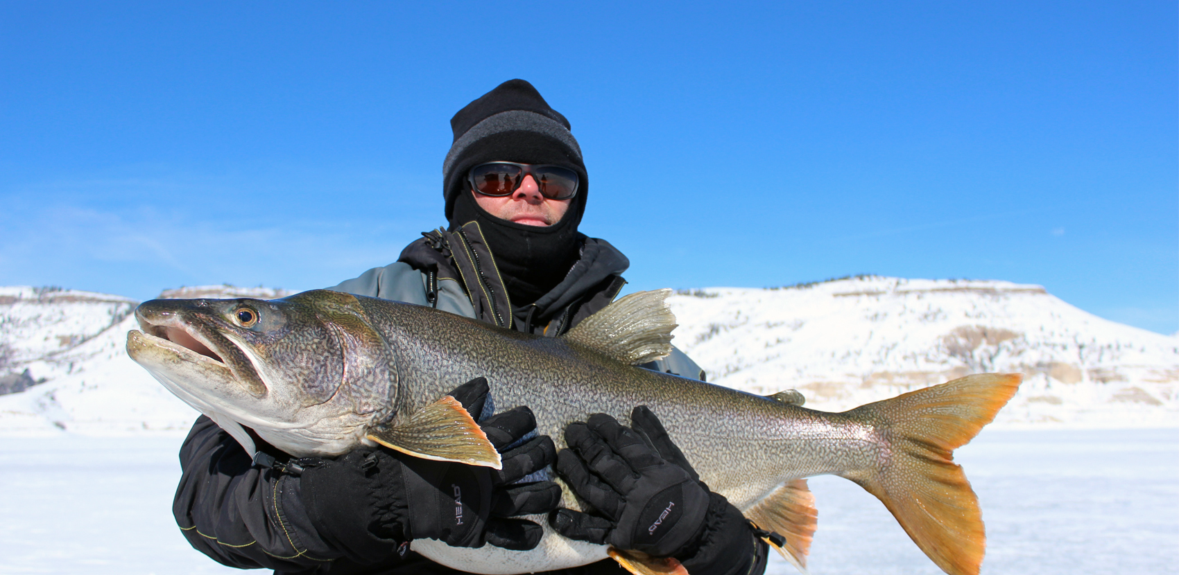 Antero blue mesa reservoir 11 mile colorado ice fishing for 11 mile fishing report