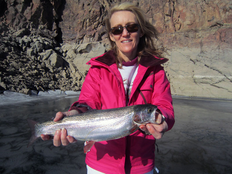 Blue Mesa Rainbow Trout Catch!