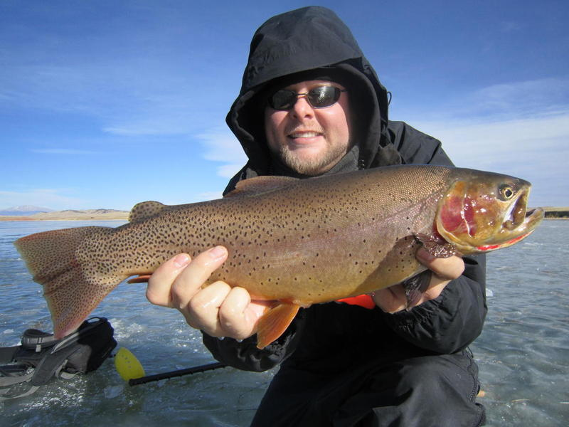 2012 Antero Snake River Cutthroat!