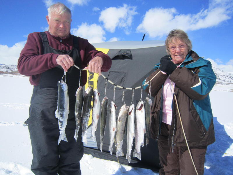 Blue Mesa Ice Fishing Stringer!