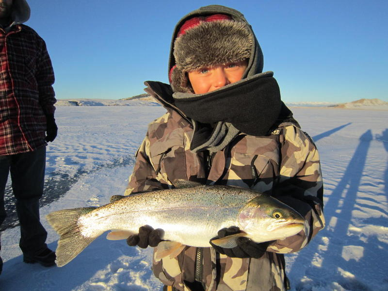 Eleven Mile rainbow trout ice fishing!