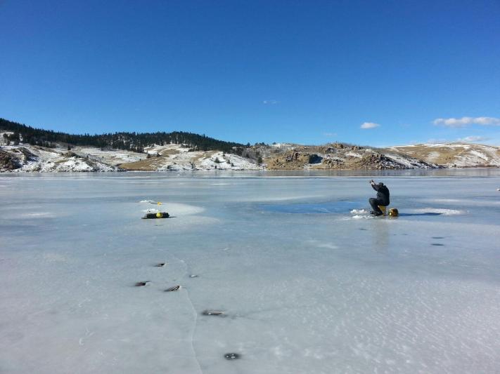 Tarryall reservoir safe ice 2015