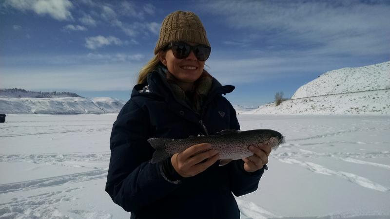 Ice fishing is good on blue mesa ice fish colorado for Is fishing good today