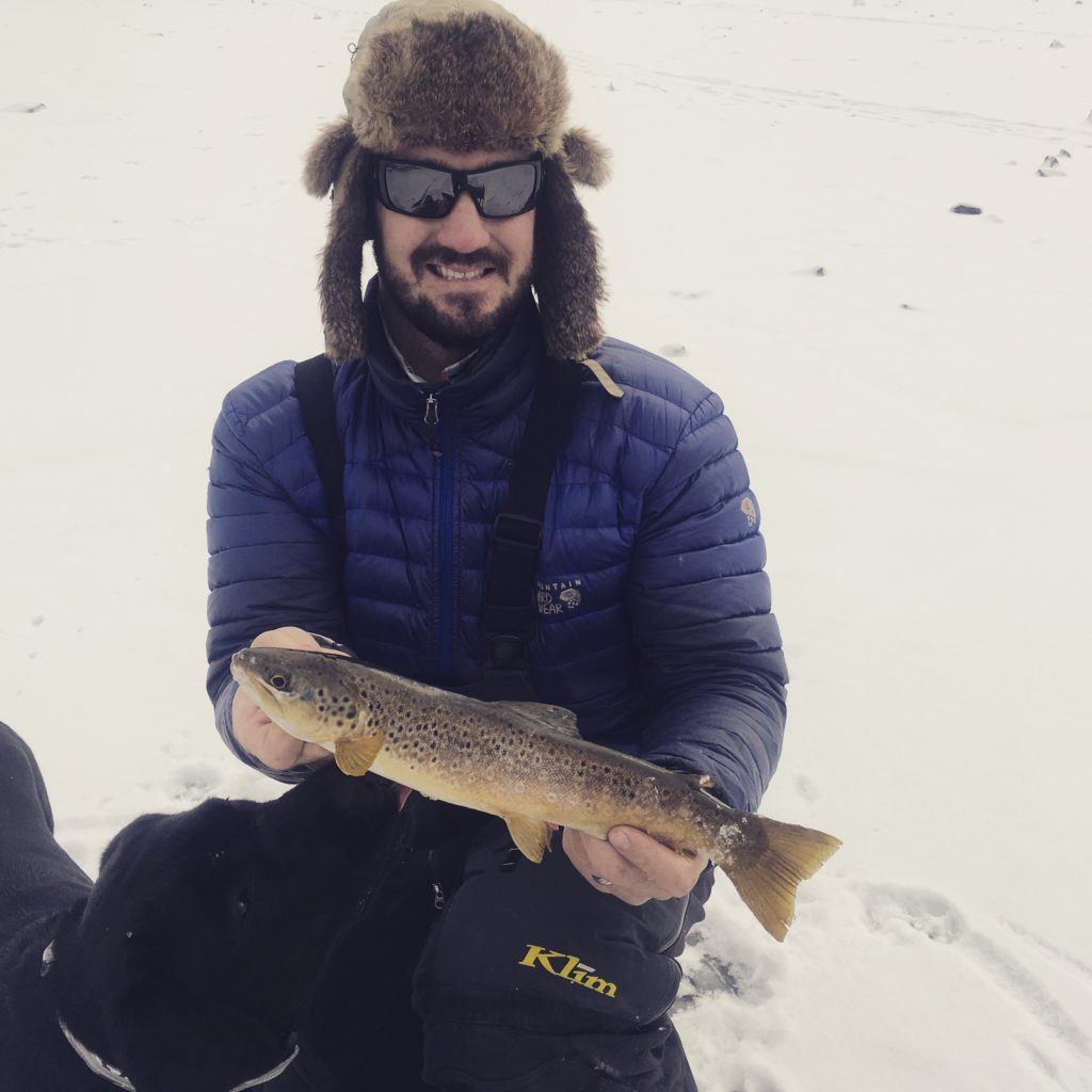 Colorado brown trout at first ice!