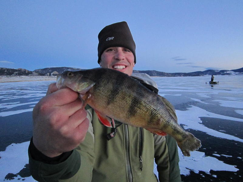 11 Mile Ice Perch!
