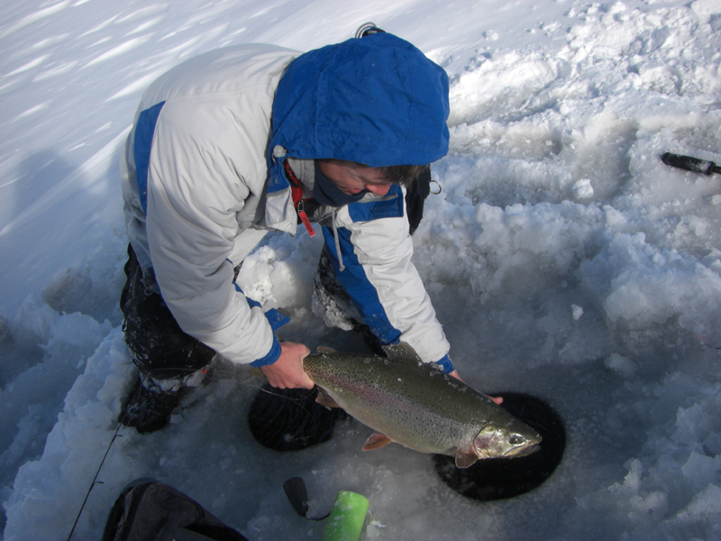 Trophy Colorado Ice fishing Trout