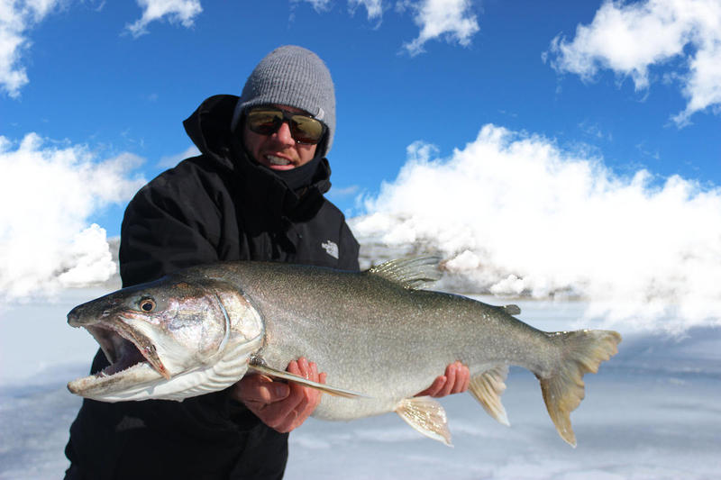 Awesome Big Fish on Blue Mesa Ice