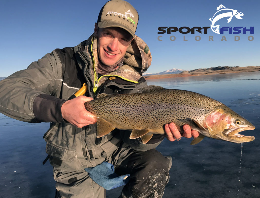 ice fish colorado trophy trout cutbow